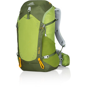 Gregory Zulu 30 Backpack moss green